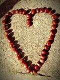 Amour de marron Photo libre de droits