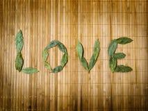 Amour de mot écrit avec des lames Photo stock