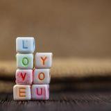 Amour de mots vous écrit dans les blocs en céramique Photographie stock libre de droits