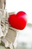 Amour de nature Image libre de droits