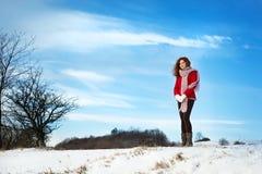 Amour de neige Photographie stock