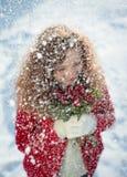 Amour de neige Photos stock