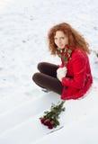 Amour de neige Images stock