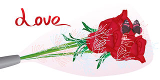 Amour de papillon de bannière d'emballage de Rose Photographie stock libre de droits