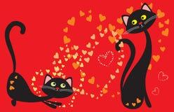 Amour de pièce de chats Photos stock