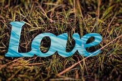 Amour de plat sur l'herbe Photo stock