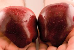 amour de pomme Photo stock