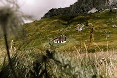 Amour de pré d'ampezzo de cortine de dolomites de maison de carlingue de Giau Photo libre de droits