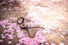 Amour de printemps Photo stock