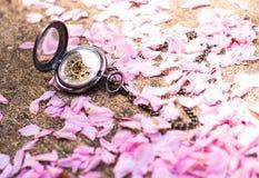 Amour de printemps Photos libres de droits