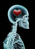 Amour de rayon X Images libres de droits