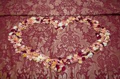 Amour de roses Photographie stock libre de droits