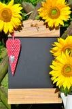 Amour de rouge de coeur de tournesol Photographie stock libre de droits