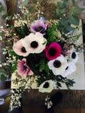 Amour de table de fleurs Photo libre de droits