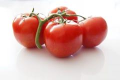 Amour de tomate Photo libre de droits