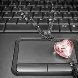 Amour de trouvaille sur l'Internet Images libres de droits