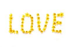 AMOUR de Word écrit avec les fleurs jaunes Photographie stock