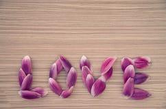 AMOUR de Word des pétales de fleur Photographie stock