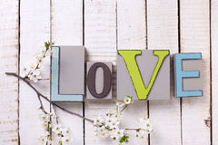 Amour de Word et branche fleurissante d'arbre Photos libres de droits