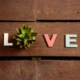 Amour de Word sur le plancher en bois Images libres de droits