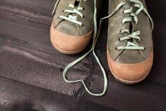 Amour des chaussures Image libre de droits