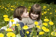 Amour des enfants sur le madow de source Photos stock