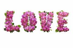 Amour des fleurs et des feuilles des orchidées avec des baisses de rosée Images stock