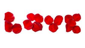 Amour des pétales de rose d'isolement sur le blanc Images libres de droits