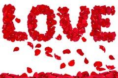 Amour des pétales roses Images stock