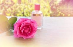 Amour doux d'arome de rose d'inconcept simple de rose dans la couleur romantique t Photos libres de droits