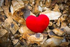 Amour doux de coeur sur les roches des montagnes Photographie stock