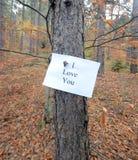 Amour en automne Photo stock