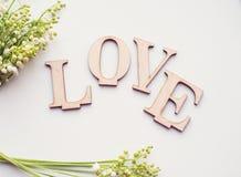 Amour en bois et fleurs de mot sur le fond blanc Image stock