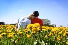 Amour en pissenlits Photo libre de droits