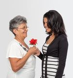 Amour entre la petite-fille et la grand-mère Image stock