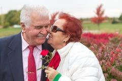 Amour et baiser d'aînés Photo libre de droits