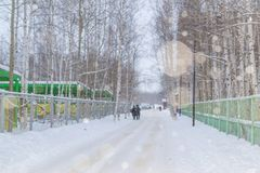 Amour et chutes de neige Images stock