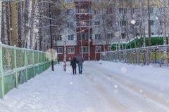 Amour et chutes de neige Image libre de droits