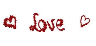 Amour et coeurs des roses Photo libre de droits
