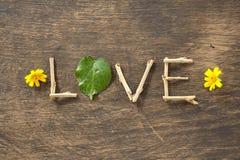 Amour et feuilles en forme de coeur Photographie stock libre de droits