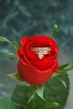 Amour et fleurs de diamants photos stock