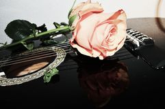 Amour et guitares Images stock