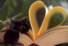 Amour et livre Images libres de droits