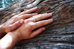Amour et mains Photo libre de droits