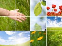 Amour et nature Photos libres de droits