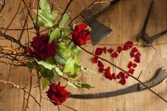 Amour et outils Images libres de droits