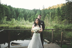 Amour et passion - le baiser de jeunes couples mariés de mariage s'approchent du lac Photos libres de droits