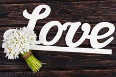 Amour et perce-neige d'inscription sur le bois Photos libres de droits