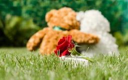 Amour et romance Teddy Bears sur une pelouse verte Photographie stock