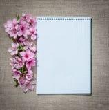 Amour et romance Un bloc-notes et des fleurs sensibles de ressort Photos stock